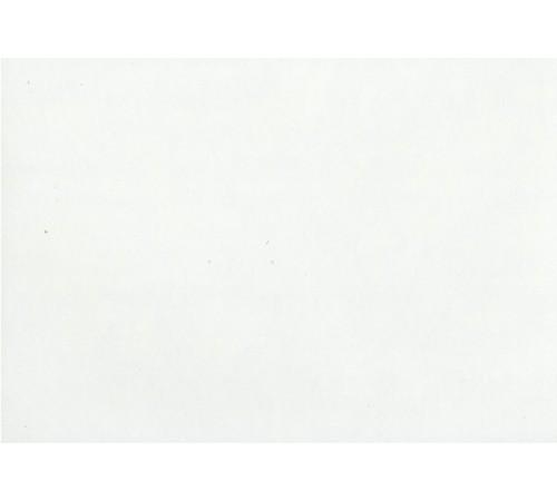 Белый (матовый) 1011 (матовый)